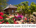 wooden bungalows in tropical garden  33374589
