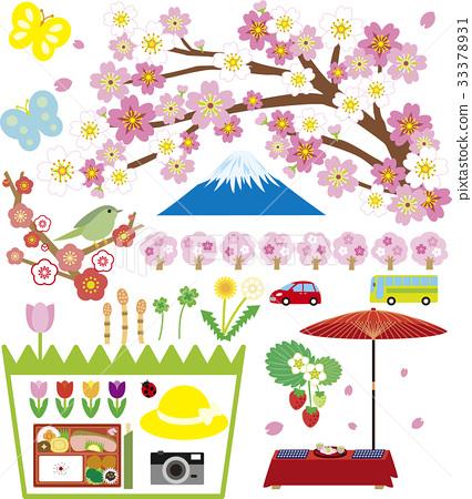 spring, cherry blossom, ume 33378931