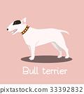 Bull terrier dog cartoon graphic design.vector 33392832
