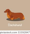 An illustration depicting Dachshund dog cartoon. 33392847