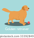 vector pet dog 33392849