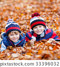 Two little kid boys lying in autumn leaves, in 33396032