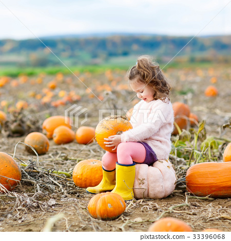 little girl farming on pumpkin patch 33396068