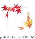 잎, 가을, 단풍나무 33398765