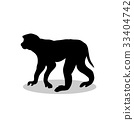 Macaque monkey primate black silhouette animal 33404742
