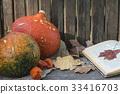 autumn composition with pumpkins 33416703