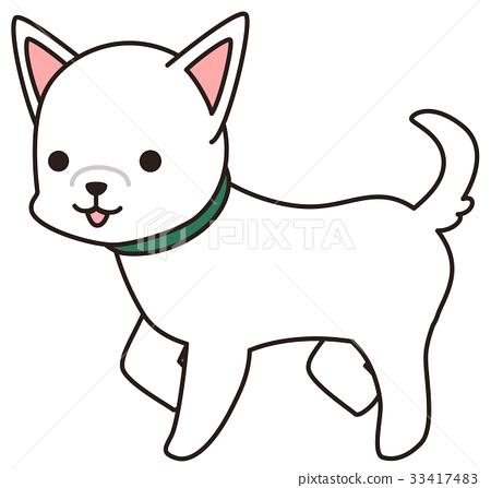 White dog 33417483