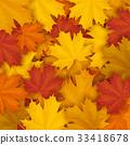 Fallen maple autumn leaves background 33418678