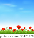 Landscape With Grass And Poppy 33423229