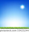 Sun And Grass 33423244