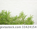 외벽과 식목 33424154