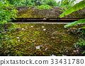 roof, moss, old 33431780