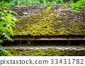 roof, moss, old 33431782