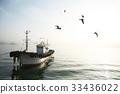 갈매기, 다수, 바다 33436022