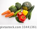 胡蘿蔔,西蘭花,西葫蘆,胡椒,甜椒,南瓜,黃瓜 33441361
