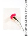 감사, 꽃, 스승의날 33443080