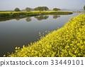 꽃, 나주시, 영산강 33449101
