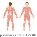 男性肌肉準備 33459381