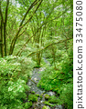 Forest Brook 33475080