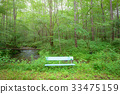 Bench in the forest 33475159
