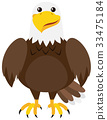 Brown eagle on white background 33475184