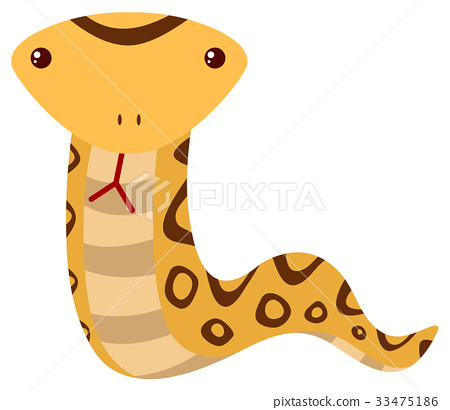 Rattle snake on white background 33475186