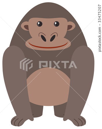 Cute gorilla on white background 33475207