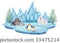 Wildlife in the arctic land 33475214