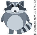 Cute raccoon with happy face 33475222