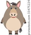野生生物 驴 圆的 33475224