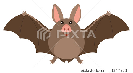 Brown bat with happy face 33475239