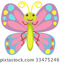 butterfly colorful vector 33475246