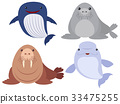Sea animals on white background 33475255