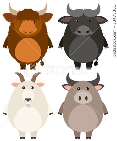 Farm animals on white background 33475361