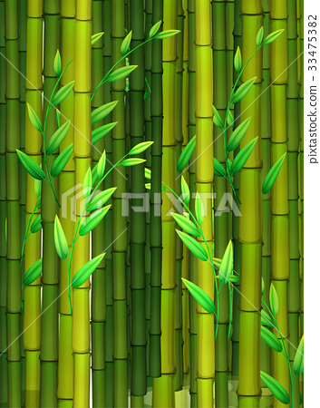 Seamless background with green bamboo 33475382