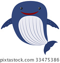 Blue whale on white background 33475386