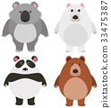 Different kinds of bears on white background 33475387