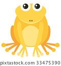 frog, yellow, vector 33475390