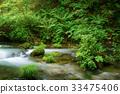 森林溪流 33475406