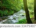 森林溪流 33475407