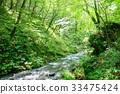 森林溪流 33475424