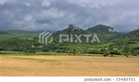 Field of wheat with mountainous backdrop 33480701