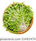 Mizuna sprouts in wooden bowl 33483474