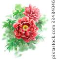 모란, 레드, 식물 33484046