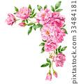 วัสดุกรอบดอกกุหลาบสีชมพู 33484181