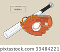 A collection of baseball elements vector. 33484221