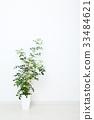 방, 그린, 녹색 33484621