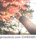 가을, 단풍구경, 단풍놀이 33485685
