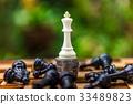 The winner of Chess 33489823