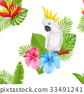 background hibiscus bird 33491241